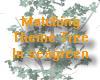 Theme seagreen Tree