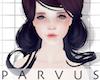 par - Yuuasa raven -
