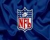 NFL Logo Flag