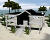 Modern House Tropical