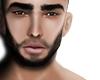 Bearded Skin T2