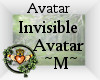 Invisible Avatar Male