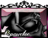 *R* Black Rose Sticker