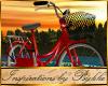 I~Red Touring Bike