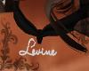 *K* Levine Collar