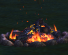 Campfire / Bonfire