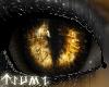 ~Tsu Feral Amber Eyes