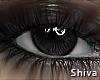 S. Avene Abyss