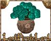 [LPL] Teal Roses