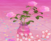Flowers Rose e