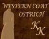 (KK)WESTERN DUSTER OSTRC