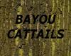 [LD] BAYOU CATTAILS