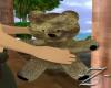 Teddy Bear (M)