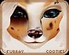 💎 Abby | Nose 2