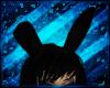 [dD] Black Bunny Ears