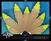 `| Neko Tails - Grass