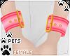 [Pets] Wristcuff   punch
