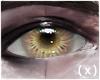( x ) 1st : Amethyst .m