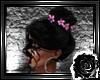 *L*Festiva Black/Black