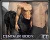 ICO Centaur M