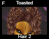 Toasted Hair 2 F