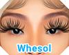 Love lashes 1