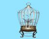Animated Bird Cage