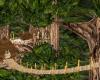 Treehouse Romance