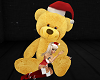 Adorable CHRISTMAS TEDDY