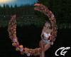 Romantic Sunrise Swing