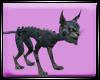 Dp Cheshire Cat