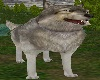 !Animated Silver Wolf