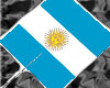 ~ArgentinaHand Held Flag