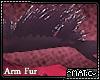 Tael - Arm fur
