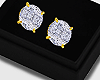 Solitaire Gold Studs