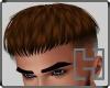 +H+ AM hair K brown