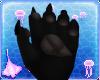 Oxu | Poodle Pawsies