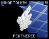 FeatheredBicepTuftM