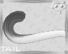Tail WhiteGrey 19a Ⓚ