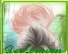 DD| Marleigh Kisses