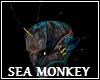 Sea Monkey Head Spikes