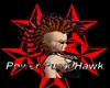 Power Punk Hawk