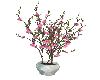 (V) Plant 3