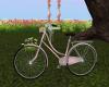 Spring Bicycle Poses