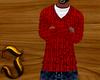 J| Polo Sweater