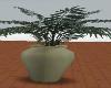Green vase w plant