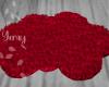 Fur Rug/ Red Clouds
