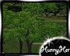 Texan Tree V2