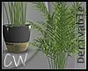 Plant 06