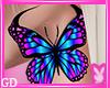 Butterfly So Fly
